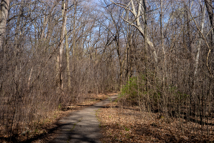 There are more than 10 miles of trails at Palmer Park.