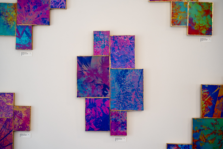 "Inside of The Red Gallery, showing Mara Magyarosi-Laytner's work ""Hyperstimulation."""