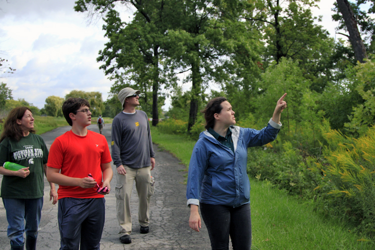 Belle Isle: Volunteers looking up at oak trees to identify Oak Wilt. Photo by Imad Hassan.