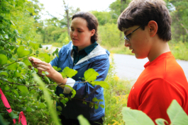 Farmington Hills Boy Scout Joe is learning to identify the invasive Buckthorn from DNR Stewardship Coordinator Echo Prafke-Marson. Photo by Imad Hassan
