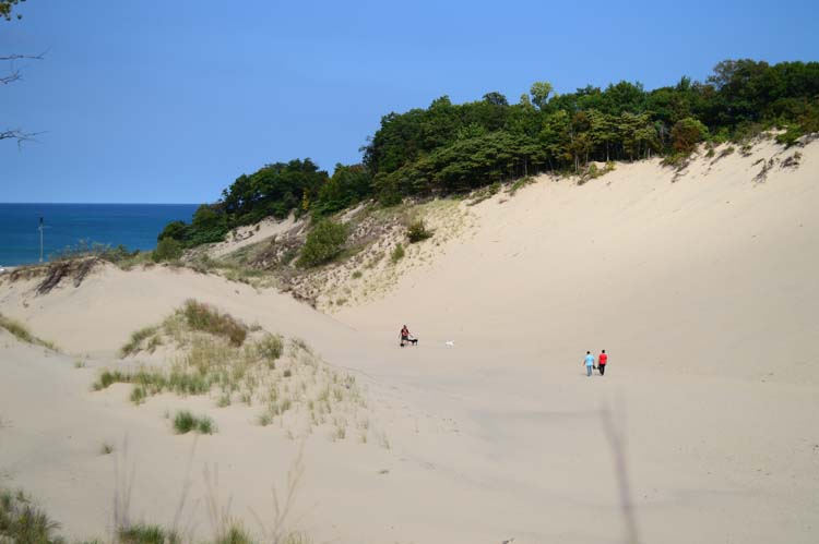 Warren Dunes State Park. Photo by Mark Wedel.