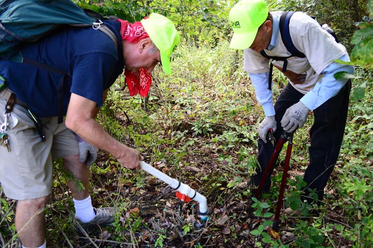 Volunteers treat invasive species at Warren State Park. Photo by Mark Wedel.