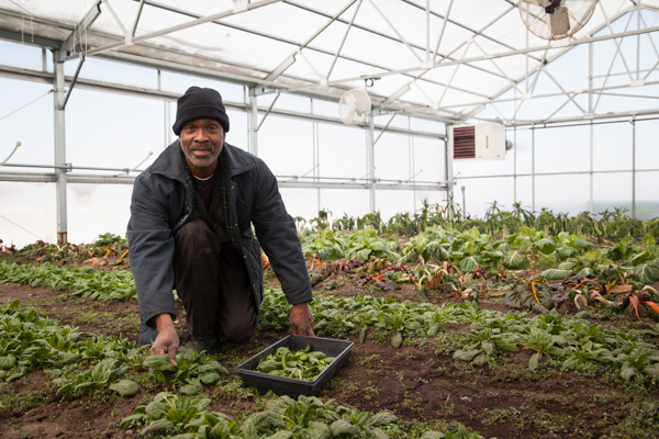 Willie Spivey, green house coordinator at Plum Street Market Garden