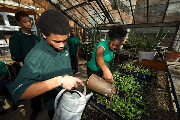 Osborn High students working in a greenhouse