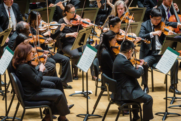 DSO Educational Concert Series