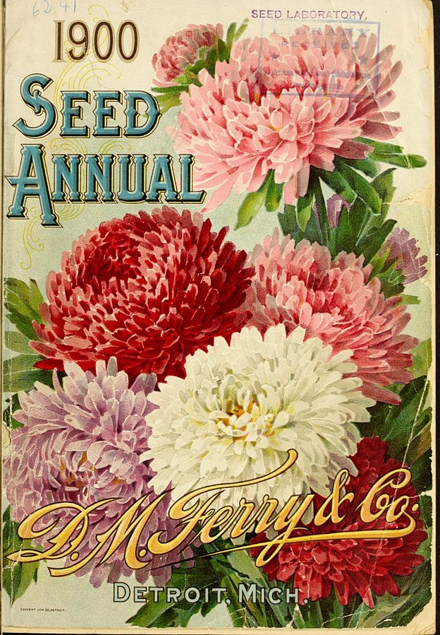 By D M Ferry Co Henry G Gilbert Nursery And Seed Trade