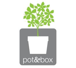 Pot and Box
