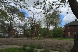 Cleared land near Neinas Elementary School