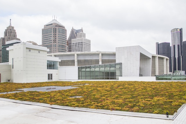 Cobo Center living roof