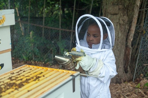 Junior beekeeper Skylar Rose Gilliam, 5, of Detroit, uses the smoker tool to calm the bees