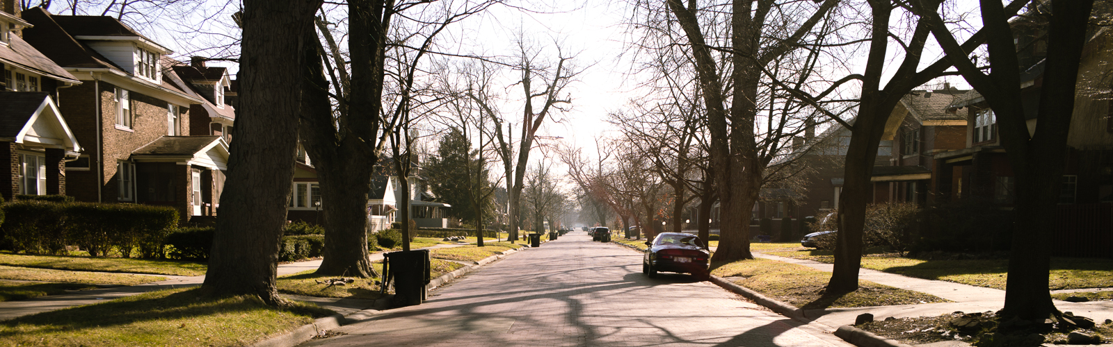 Residential street in Jefferson Chalmers <span class='image-credits'>Steve Koss</span>