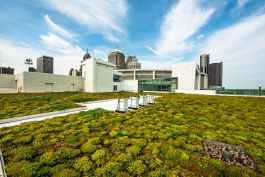 Cobo's green roof is just one aspect of the center's sustainability practices.