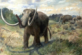 Illustration of a mastodon in Michigan.