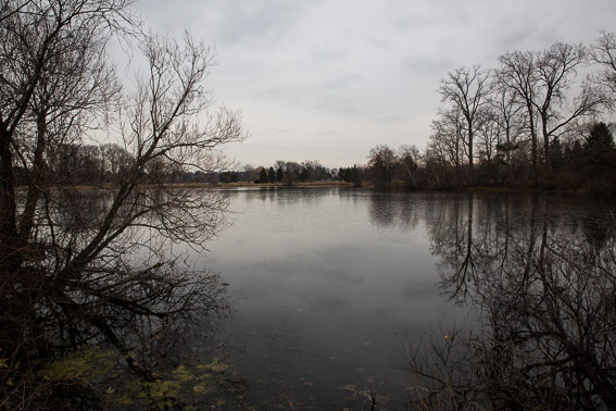 A lake in Oakland County